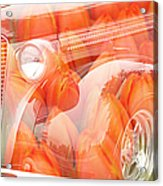 Tulip Car Abstract Acrylic Print