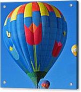 Tulip Hot Air Balloon Acrylic Print