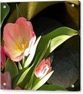 Tulip Lights Acrylic Print