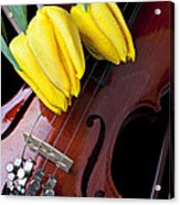 Tulips And Violin Acrylic Print
