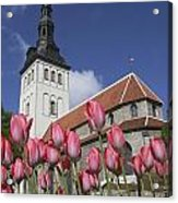 Tulips Outside Niguliste Church Acrylic Print
