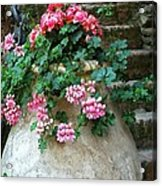 Tuscan Earthenware Pot And Flowers Acrylic Print