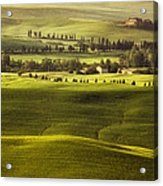 Tuscan Fields Acrylic Print