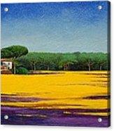 Tuscan Landcape Acrylic Print by Trevor Neal