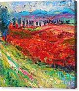 Tuscany Italy Landscape Poppy Field Acrylic Print