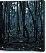 Twilight In The Smouldering Forest Acrylic Print