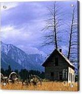 Twin Tree Cabin Acrylic Print