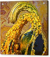 Two Gourds Acrylic Print