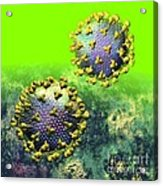 Two Hiv Particles On Bright Green Acrylic Print