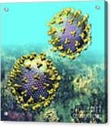 Two Hiv Particles On Light Blue Acrylic Print