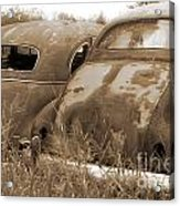 Two Old Rear Ends-sepia Acrylic Print
