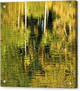 Two Palms Reflected In Water Acrylic Print by Rich Franco