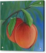 Two Peaches Acrylic Print
