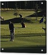 Two People Play Golf While Elk Graze Acrylic Print