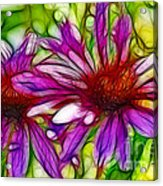 Two Purple Daisy's Fractal Acrylic Print