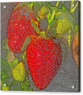 Two Strawberries Acrylic Print