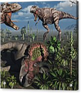 Two T. Rex Dinosaurs Confront Each Acrylic Print by Mark Stevenson