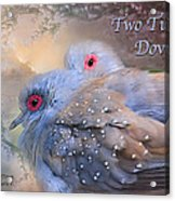 Two Turtle Doves Card Acrylic Print