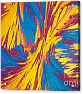 Tyrosine Acrylic Print