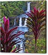 Umauma Falls Big Island Hawaii Acrylic Print