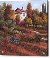 Una Bicicletta Nel Bosco Acrylic Print