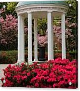 Unc Well In Spring Acrylic Print