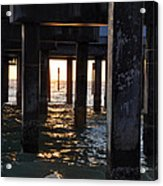 Under The Pier Acrylic Print by Bill Cannon