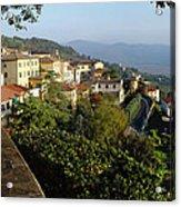 Under The Tuscan Sun Acrylic Print