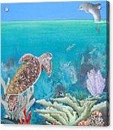 Underwater Glory Acrylic Print
