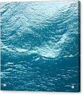 Underwater Image Acrylic Print