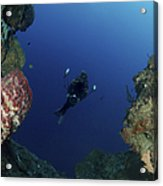 Underwater Photographer At The Entrance Acrylic Print