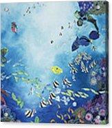 Underwater World IIi Acrylic Print