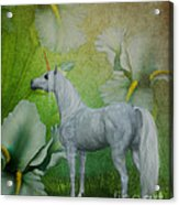 Unicorn And Lilies Acrylic Print