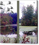 Unicorn Lake - Cross Your Eyes And Focus On The Middle Image Acrylic Print