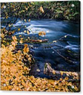 Union Creek In Autumn Acrylic Print
