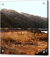 Union Pacific Locomotive Trains . 7d10546 Acrylic Print