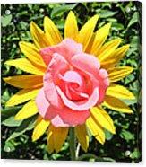 Unique Sun Rose Acrylic Print