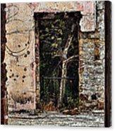 Untitled Acrylic Print by Daniele Smith
