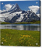 Up In The Bernese Alps Acrylic Print