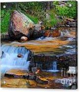 Upper Provo River Cascade Acrylic Print