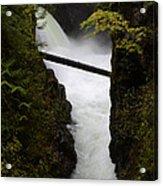 Upper Qualicum Falls 2 Acrylic Print