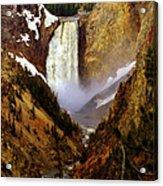 Upper Yellowstone Falls Acrylic Print