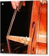 Upright Bass 1 Acrylic Print