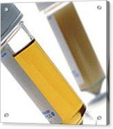 Urine Samples Acrylic Print