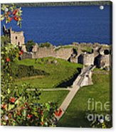 Urquhart Castle On Loch Ness Acrylic Print