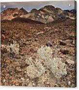 Usa, California, Death Valley, Barren Landscape Acrylic Print
