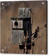 Used House - Free Rent Acrylic Print