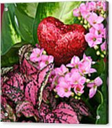 Valentine Heart And Flowers Acrylic Print