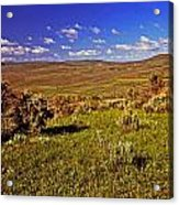 Valley At Fossil Butte Nm Acrylic Print