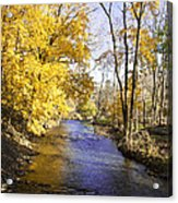 Valley Forge Creek In Autumn Acrylic Print